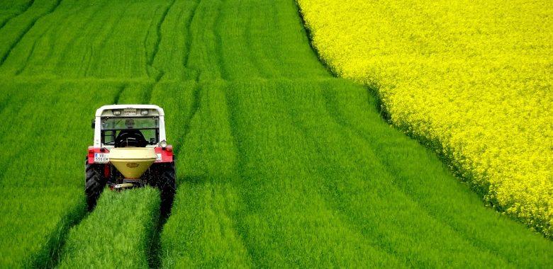 Uljana repica - traktor